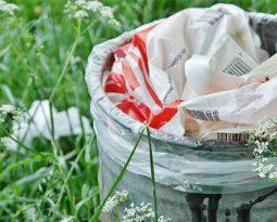 Compostagem: lixo nutritivo