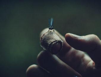 5 remédios naturais para aliviar picadas de insetos