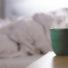 Cansaço e fadiga? 10 hábitos dentro de casa que podem ser a causa