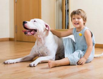 Cuidados com os móveis para quem tem crianças ou pets em casa